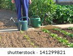 watering cans at the feet of a... | Shutterstock . vector #141299821