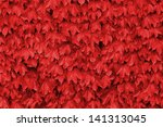 Red Leaves Over A Wall