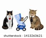 There Is A Cat Family. The Blu...