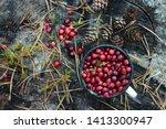 Ripe cranberries in a mug on a...