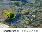 seabed close up. boulder... | Shutterstock . vector #1413314441