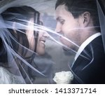 A Wedding Couple Hide Under Th...