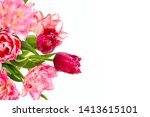 fowers tulips isolated on white ... | Shutterstock . vector #1413615101