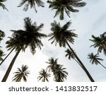coconut palm trees in the sky... | Shutterstock . vector #1413832517