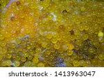 catfish eggs clear catfish eggs.... | Shutterstock . vector #1413963047