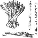 vector hand drawn set of... | Shutterstock .eps vector #1414074251