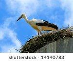 bird the stork | Shutterstock . vector #14140783