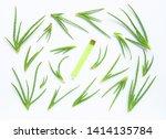 aloe vera is a popular... | Shutterstock . vector #1414135784