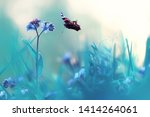 butterfly on a flower spring or ... | Shutterstock . vector #1414264061