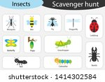 Scavenger Hunt  Insects Theme ...