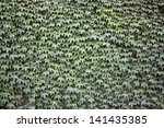 Wall with green foliage - stock photo
