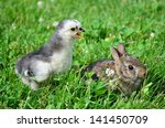chick and bunny in grass   Shutterstock . vector #141450709