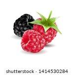 realistic . blackberries with... | Shutterstock . vector #1414530284