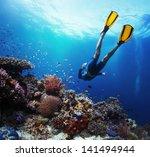 freediver gliding underwater... | Shutterstock . vector #141494944