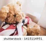 Little Teddy Bear With Usa Flag ...