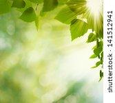 beauty summer day. abstract... | Shutterstock . vector #141512941