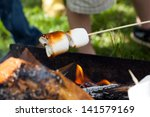 Marshmallow Barbecue   A...