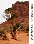 tree in red desert landscape of ... | Shutterstock . vector #1415972081