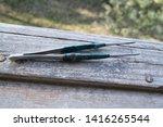 metal old tweezers top view | Shutterstock . vector #1416265544
