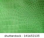 Crocodile Skin Pattern