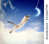 Stock photo image of cat in jump catching moon 141664744