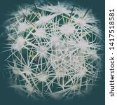 Small photo of Top view close-up round green cactus with needles. Vintage vignette, toned picture with Instagram filter. Concept: prickly, unfriendly planet Earth, view from Space.