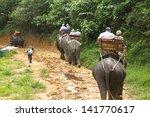 Elephant Trekking At Kao Sok ...