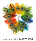 Colored Peacock Feather On...