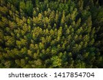 forest from above in allg u | Shutterstock . vector #1417854704