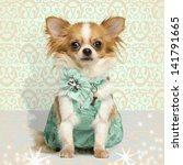 Chihuahua Wearing A Green Dres...