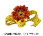 flower and measuring tape.... | Shutterstock . vector #141795049