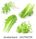 lettuce leaves isolated on... | Shutterstock . vector #141796759