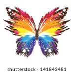 Stock vector grunge rainbow butterfly 141843481