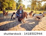 Stock photo smiling girl walking dogs in the park and playing with him 1418502944