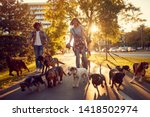 Stock photo happy couple dog walker with dogs enjoying in walk city 1418502974