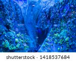 photograph of a fishing net on... | Shutterstock . vector #1418537684