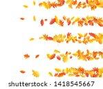 oak and maple leaf beautiful... | Shutterstock .eps vector #1418545667