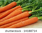 Freshly washed whole carrots on wooden cutting board.  Close-up with shallow dof. - stock photo