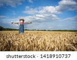 A Scarecrow In A Wheatfield