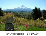 A View Of Mt. Hood From An...