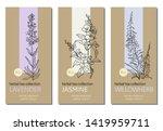 vector set of herbal tea labels ... | Shutterstock .eps vector #1419959711