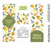 card templates with fruits ... | Shutterstock .eps vector #1420101641