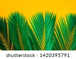 green tropical palm leaves on... | Shutterstock . vector #1420395791