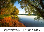 forest river shore in evening.... | Shutterstock . vector #1420451357