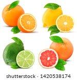 fresh orange  lemon  lime ... | Shutterstock . vector #1420538174
