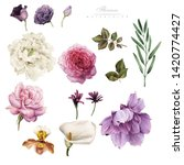 flowers  watercolor  can be... | Shutterstock . vector #1420774427