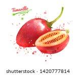 watercolor hand drawn... | Shutterstock . vector #1420777814