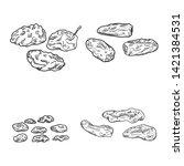 vector set of sketch dried... | Shutterstock .eps vector #1421384531