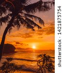Coconut Palm And Sunrise At...