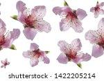 pattern of pink flowers on an... | Shutterstock . vector #1422205214